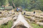 تخریب منابع طبیعی به اسم خودکفایی